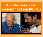 Agumbe Rainforest Research Station (ARRS)